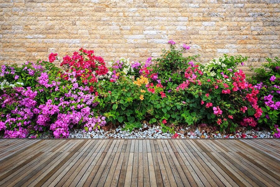 Decora tu jardín con flores y piedras