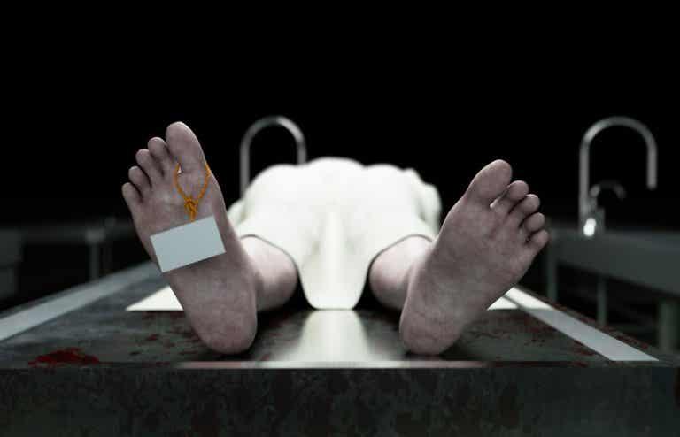 ¿Qué es el livor mortis?