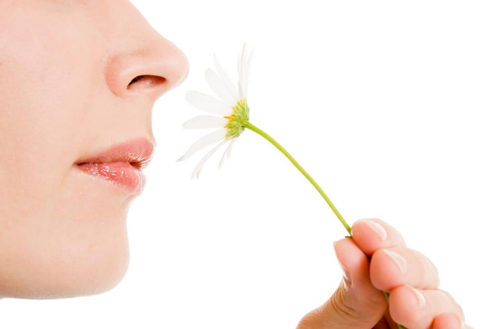 ¿Cuáles son las alteraciones del olfato más comunes?