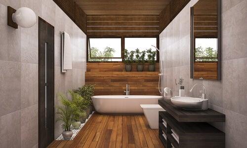 6 plantas para el baño que debes tener