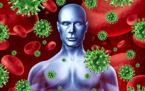 Sistema inmunitario que libera endorfinas