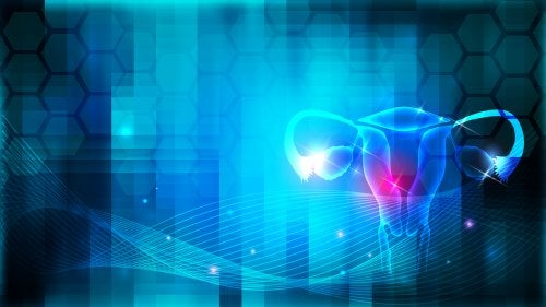 ¿Qué es la histeroscopia diagnóstica?