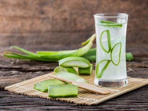 Combate la digestión lenta con preparaciones a base de aloe vera
