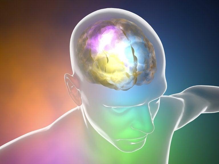 Angioma cerebral, ¿cómo nos afecta?