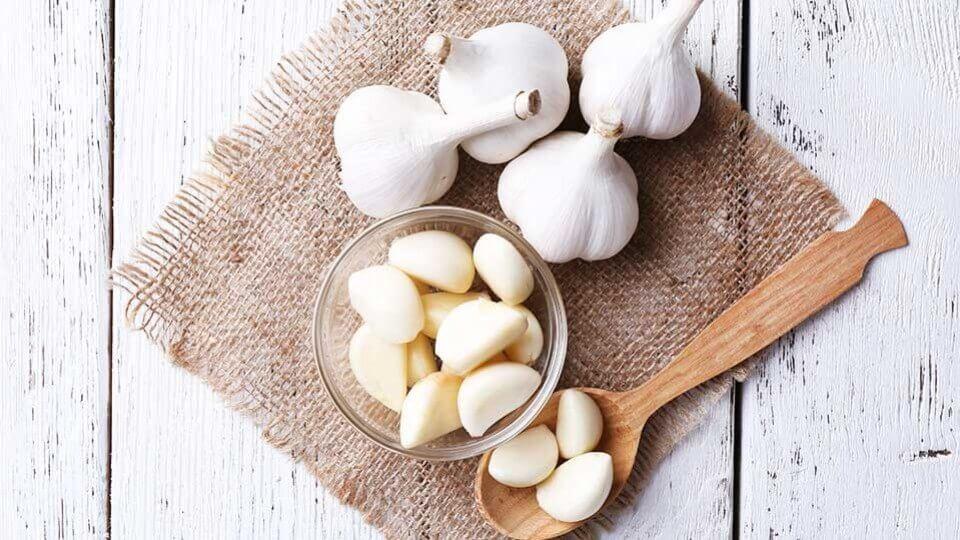 Cabezas y dientes de ajo blanco