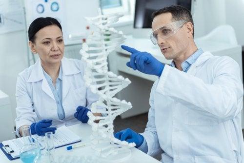Investigadores mirando una cadena de ADN: síndrome de Zellweger