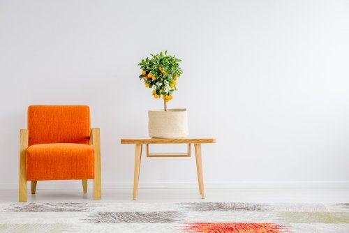 Cómo hacer arreglos de flores minimalistas