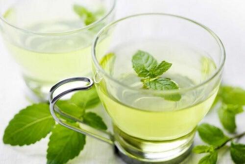 La infusión de menta es un buen remedio para la halitosis.