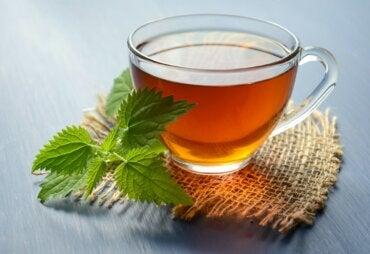5 bebidas herbales para prevenir cálculos renales