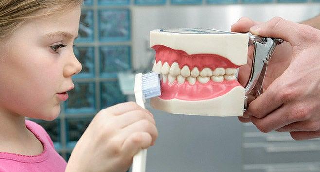 Niña cepillando los dientes a un modelo de boca.