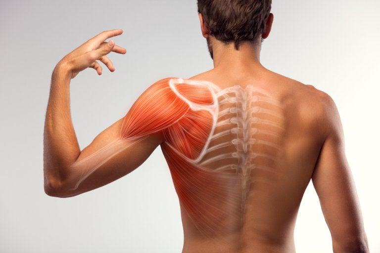 7 soluciones caseras para disminuir los espasmos musculares