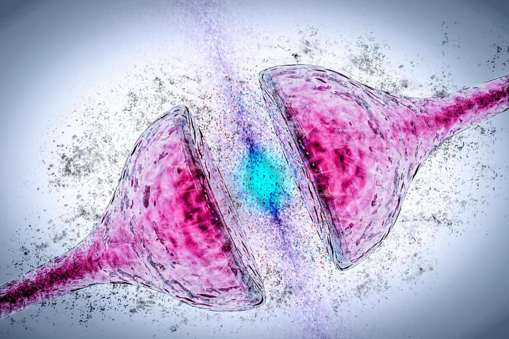 Últimas investigaciones en el tratamiento del Alzheimer