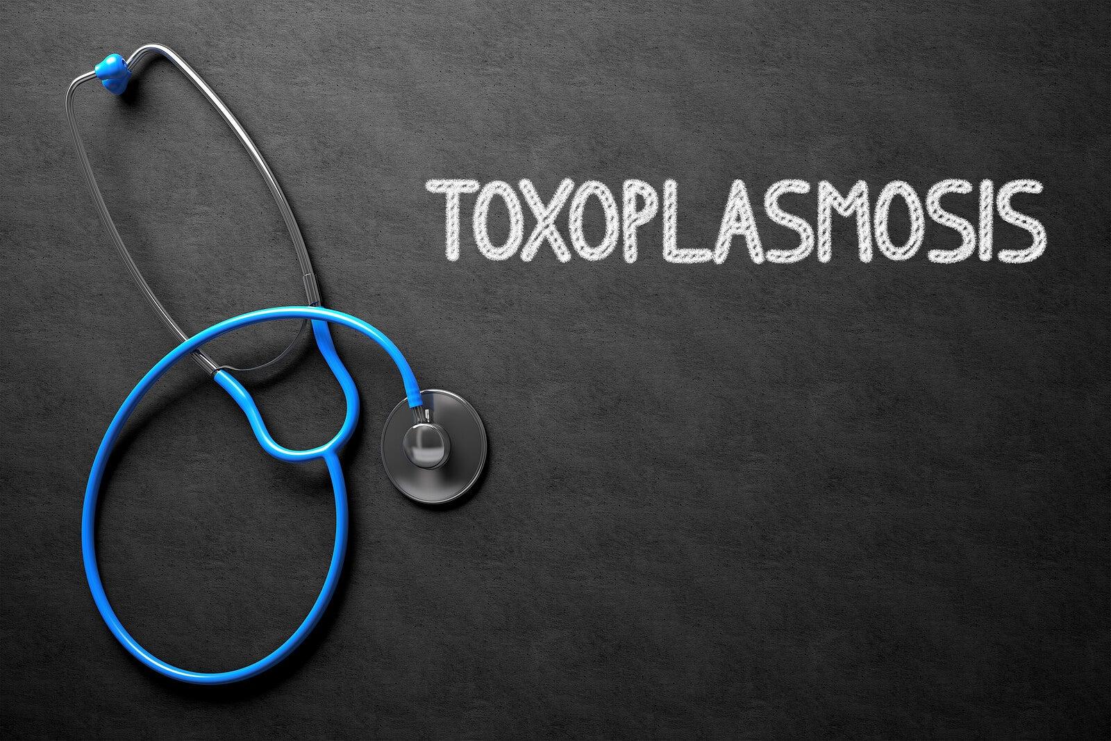 Toxoplasmosis: qué es y cómo tratarla