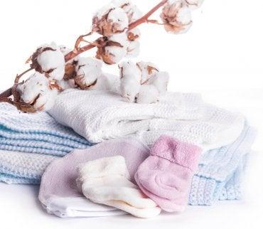 Planta del algodón sobre ropa de algodón.