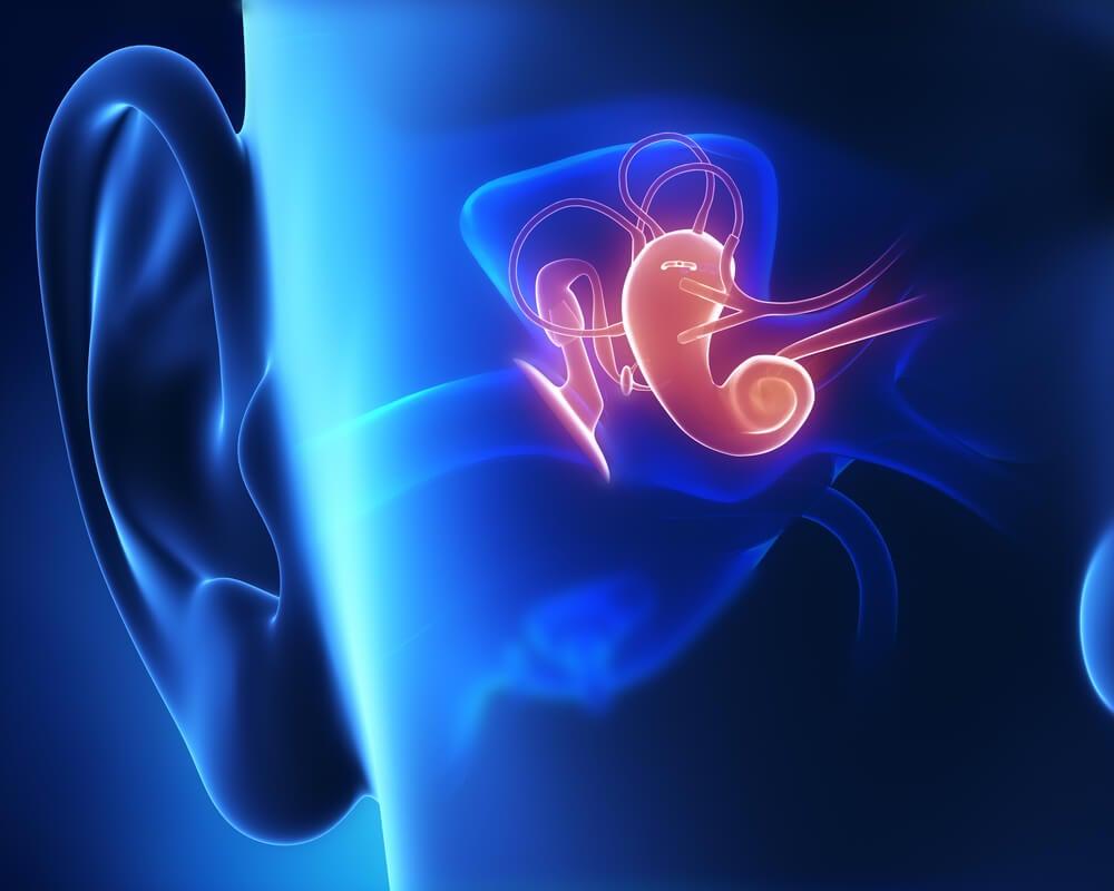 recreación de oído interno