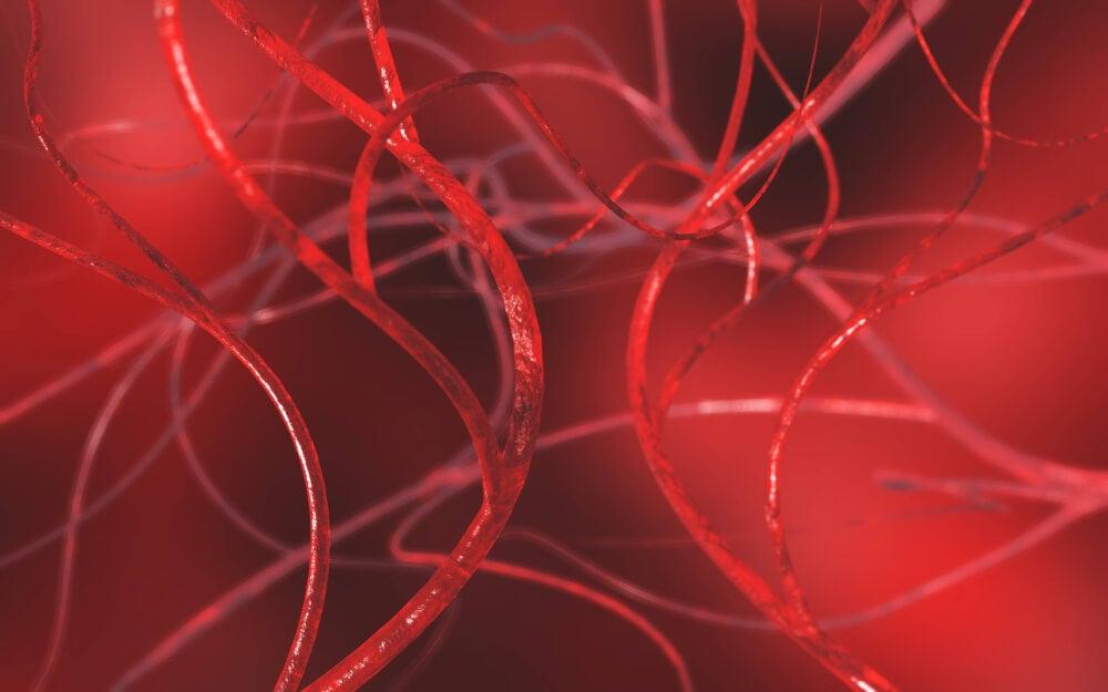 Imagen en 3D de vasos sanguíneos.