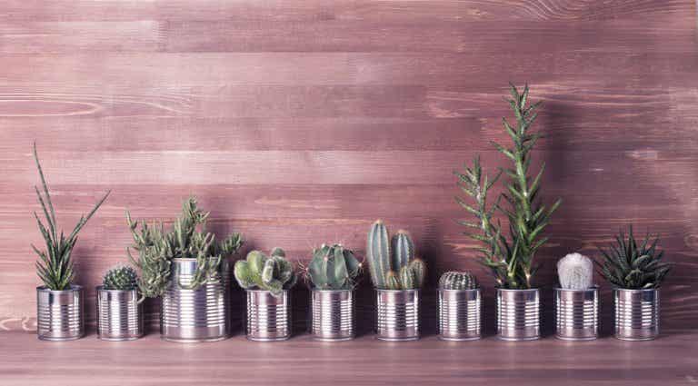 3 ingeniosas ideas para reciclar latas de aluminio
