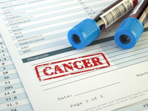 Alimentación y cáncer: factores de riesgo