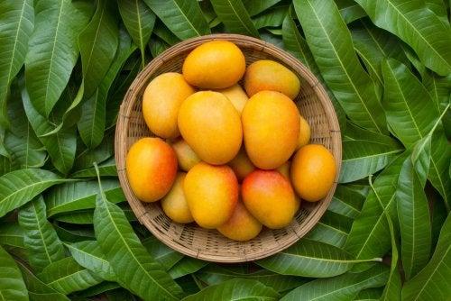 Cómo hacer una infusión de hojas de mango para tratar la diabetes