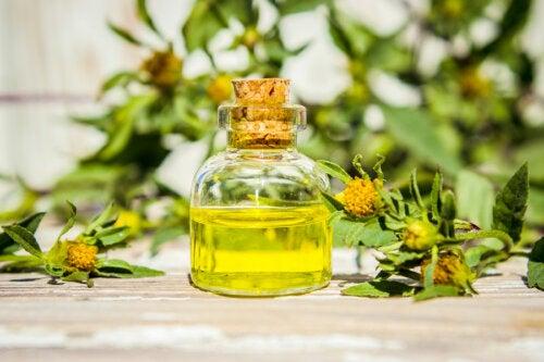 7 remedios caseros para aliviar la micosis cutánea de manera natural