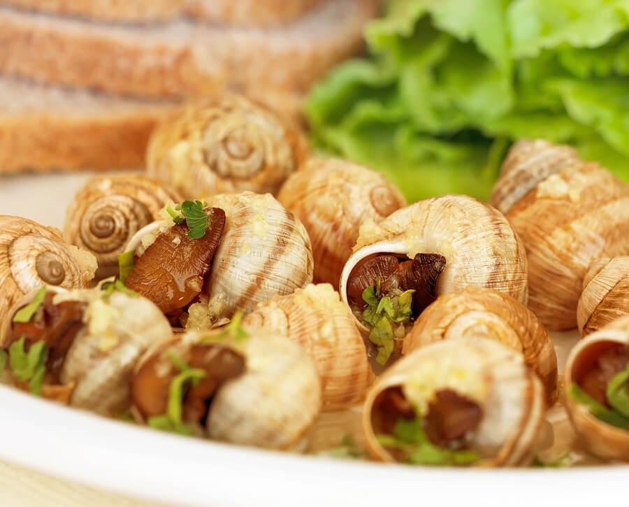 La mejor forma de preparar caracoles y sorprender a tu familia
