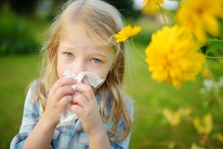 5 remedios herbales para combatir la rinitis alérgica