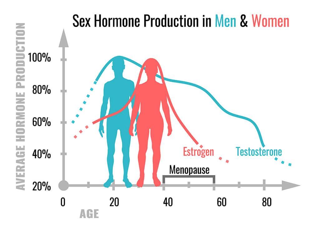 ¿Cuáles son las funciones de las hormonas sexuales?