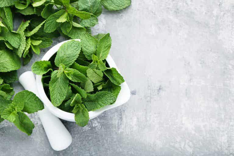 3 soluciones con menta para los problemas digestivos