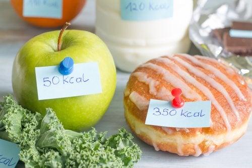 dieta 500 kcal dia
