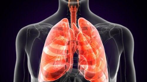 Qué es la peste pulmonar y cuáles son sus síntomas