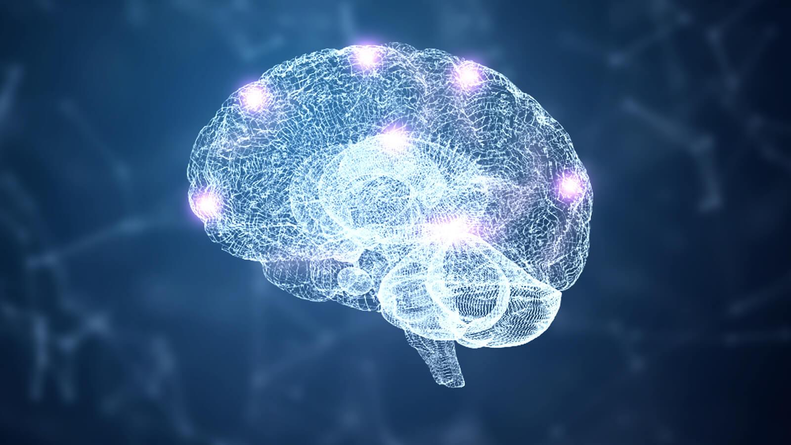 7 hábitos que apoyan la regeneración de células cerebrales