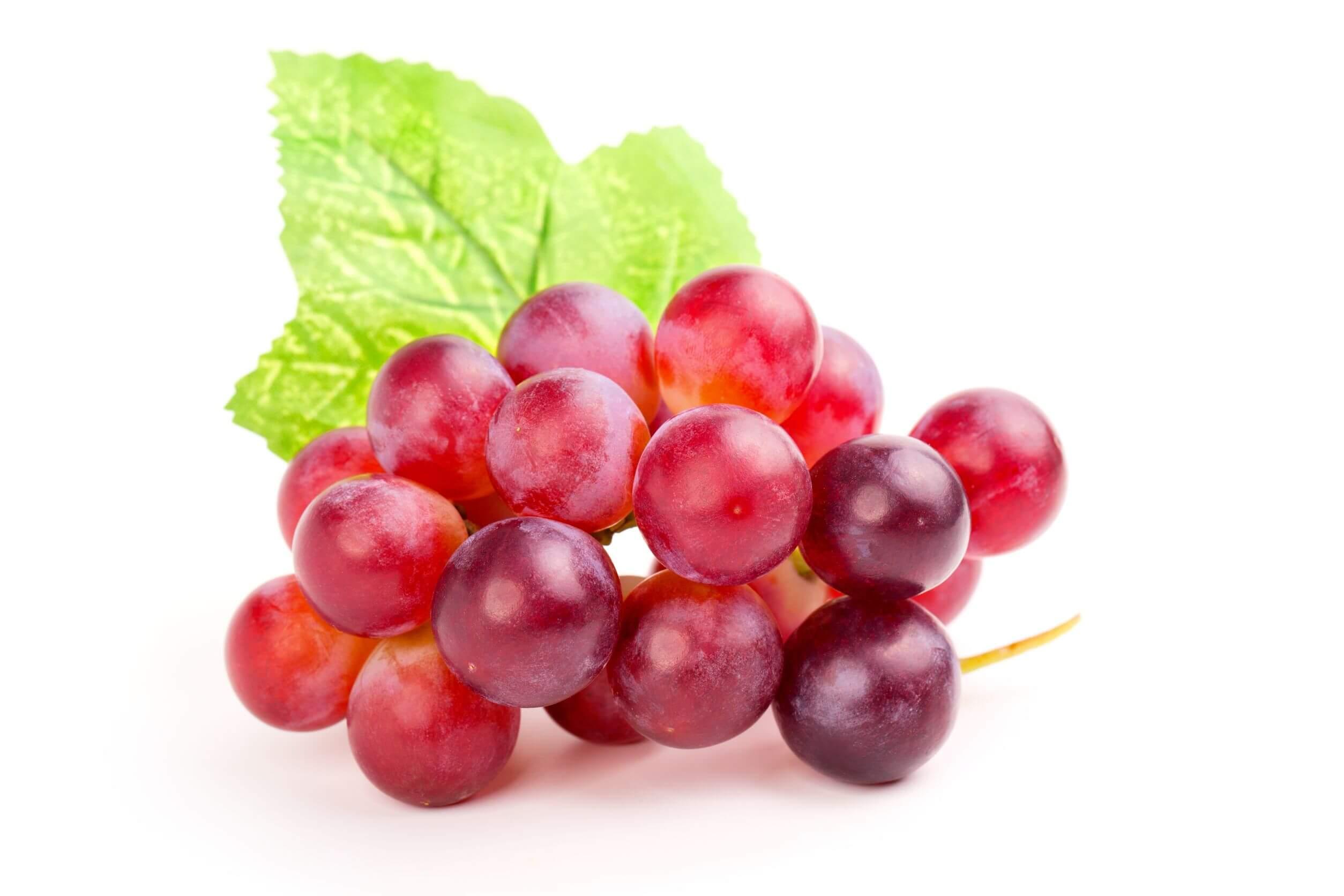 Las uvas son excelentes para hacer jugos rojos.