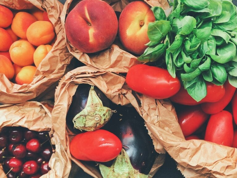 ¿Qué alimentos son saludables para la úlcera?