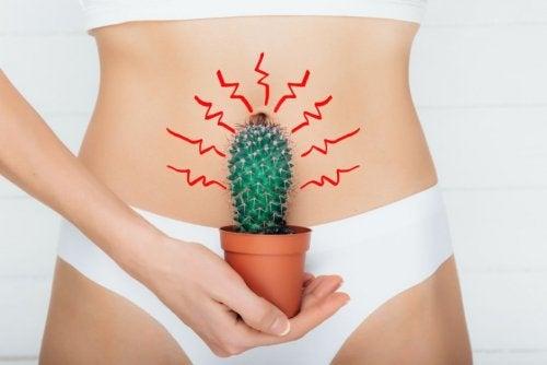 Mujer con cactus en el abdomen