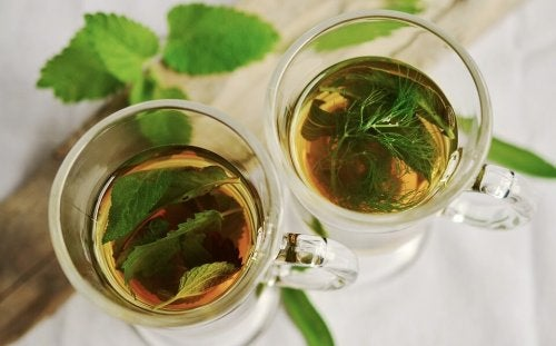 fennel and mint leaves tea