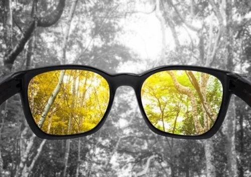 Causas de la visión cromática deficiente