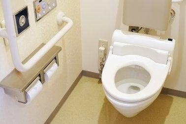 Los innovadores inodoros japoneses