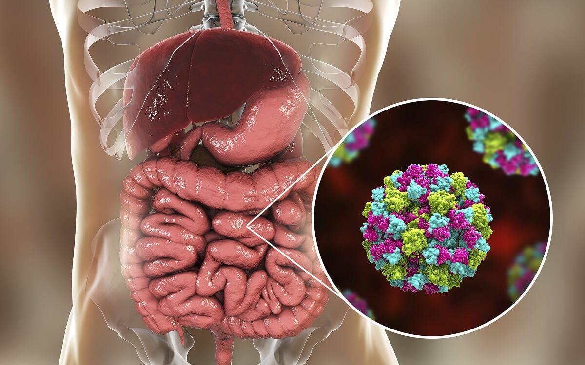 Sufrir de gastroenteritis es difícil.