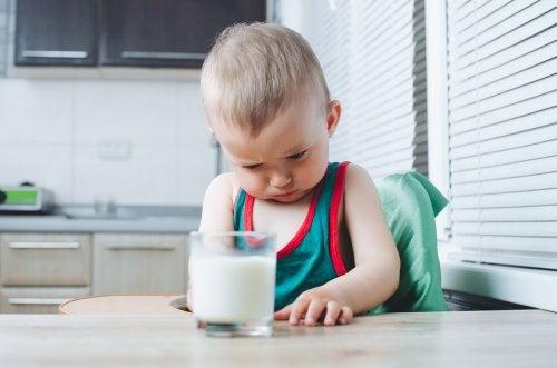 ¿Qué es la intolerancia alimentaria en niños?