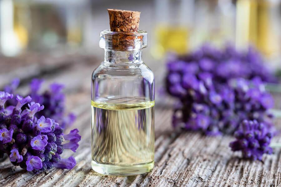 Aceite de lavanda para calmar las picaduras de abeja