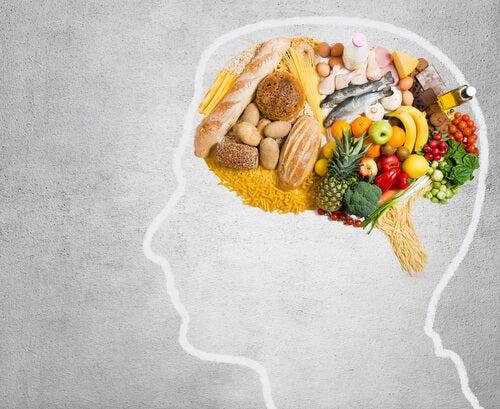 ¿Qué grasa consume tu cerebro?