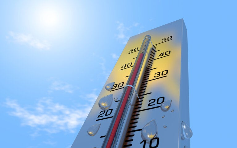 6 efectos del calor en el organismo