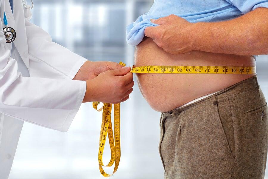 Síndrome metabólico inducido por fructosa
