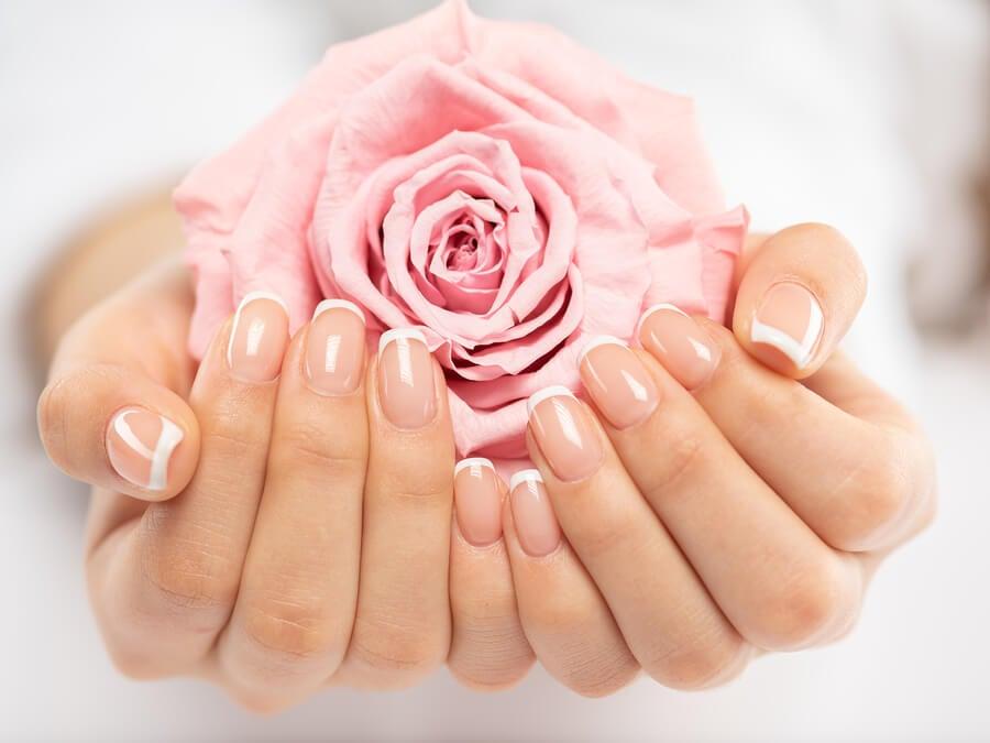Rosa en las manos.