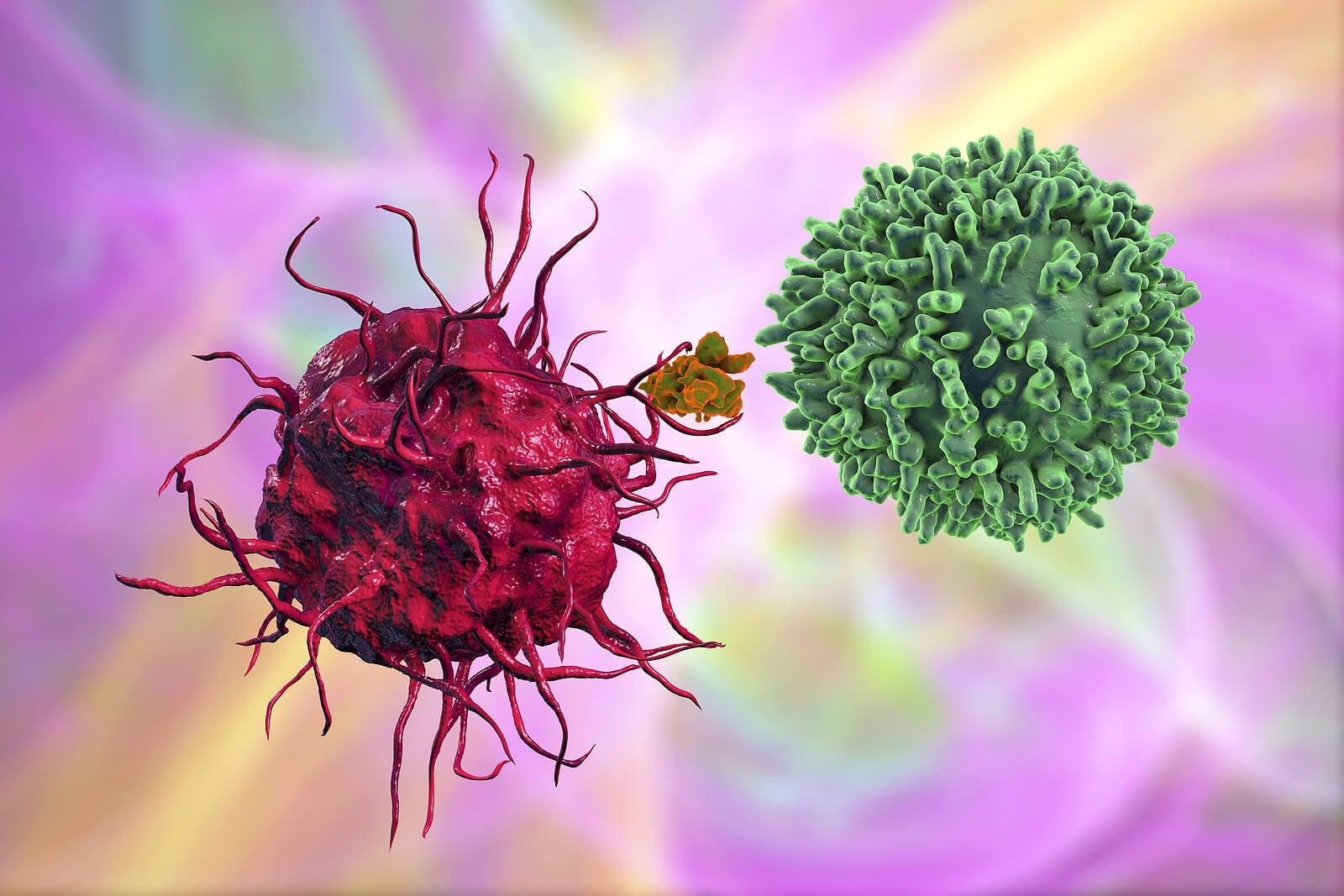 Anticuerpos actuando en un enfermo por sífilis.