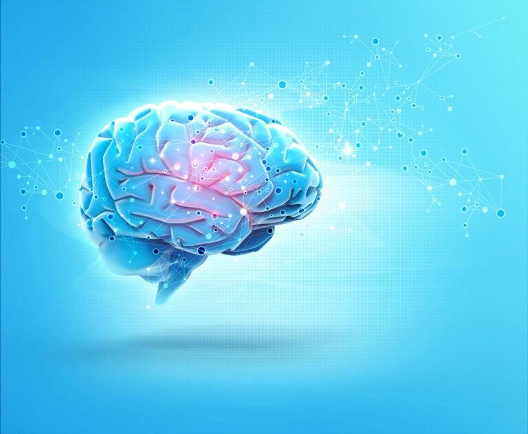 Efectos del alcohol sobre el sistema nervioso
