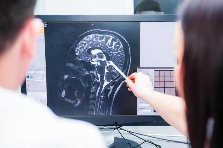 ¿Qué es el sistema neuroendocrino?