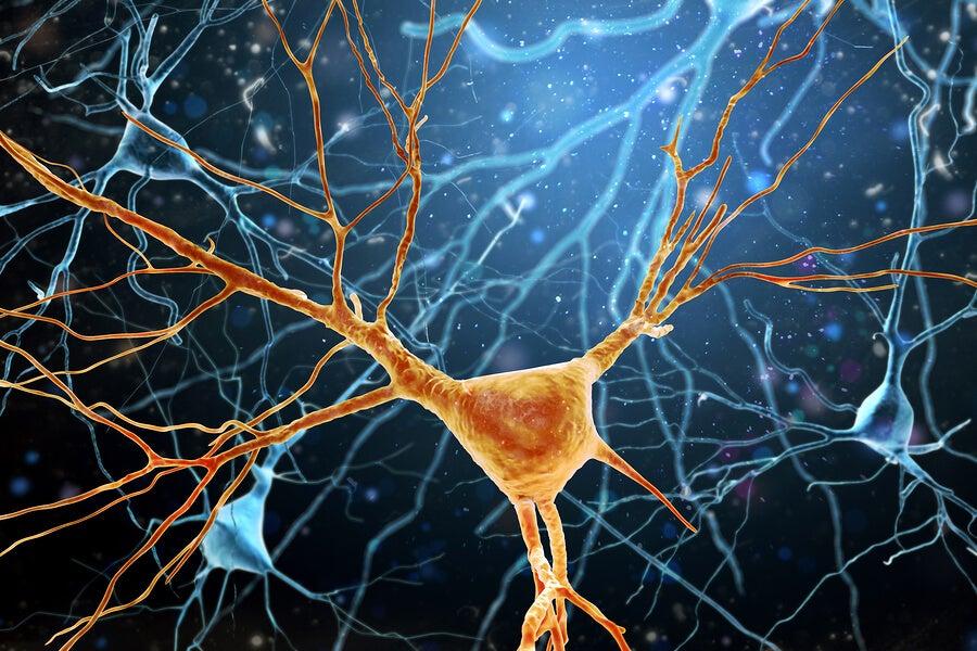 falta de glucosa y enfermedades neuromotoras