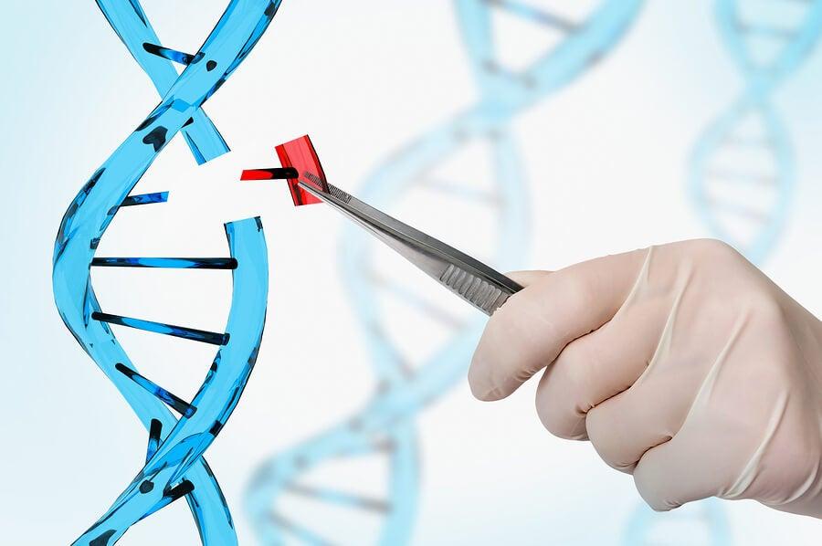 en qué consiste la terapia génica para el corazón