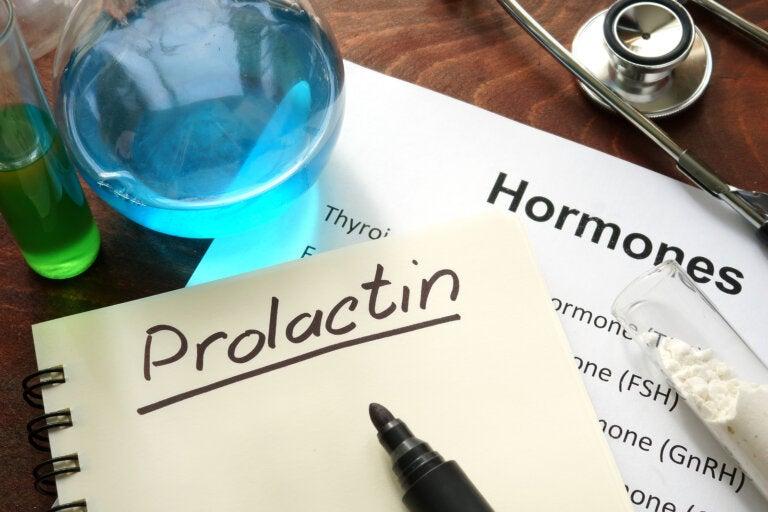 Prolactina: ¿qué es y cómo funciona?